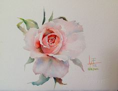 by La Fe - watercolor without drawing Watercolor Cards, Watercolor And Ink, Watercolour Painting, Watercolor Flowers, Painting & Drawing, Watercolors, Botanical Art, Botanical Illustration, Watercolor Illustration