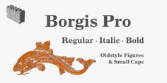 Borgis Pro™ font download