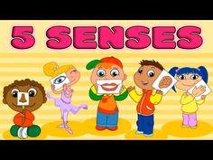 My Five Senses: Taste, Smell, Sight, Hearing, Touch - Kids Learning - By. Five Senses Preschool, 5 Senses Activities, My Five Senses, Educational Activities For Kids, Educational Videos, Learning Activities, Spanish Lessons For Kids, Spanish Basics, Learning Spanish