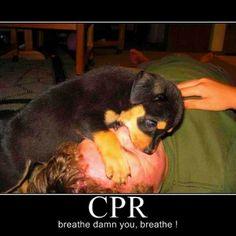 #cpr #emt #firefighter #ems