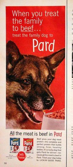 1961 Pard Dog Food Ad Retro Pets Magazine by SnowFireCandleCo