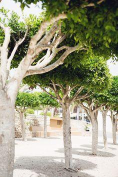 Santa Gertrudis, Ibiza #eivissa #ibizaimages #SantaGertrudis