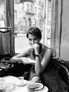 Sophia Loren Premium Photographic Print by Peter Stackpole at Art.com #sophialoren