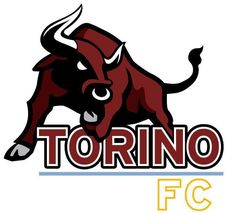 Image result for torino fc