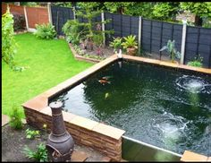 Raised pond.  I can stand my in ground pond.  Raised pond is more my style. A raised pond is a less likely chance of your kids and dogs falling into it and drowning.