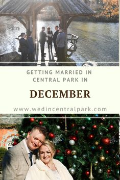 Central Park, New York December Wedding - Winter / Christmas / New Year's Wedding Planning Tips, Wedding Tips, Fall Wedding, Dream Wedding, Wedding Locations, Wedding Vendors, New York In December, Wedding Trends, Wedding Styles