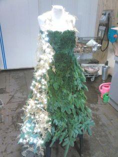 De jurk is gemaakt van nobilis takken, wit gespoten asparagus en lichtjes.