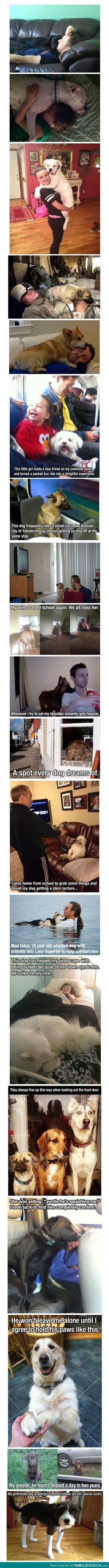 Dogs truly are man's best friend