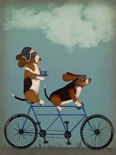 Courtside Market's Basset Hound Tandem Canvas Wall Art captures the dog's playful spirit with two basset ghounds riding a tandem bicycle. The canvas is professionally hand-wrapped on non-warping, sustainable wood stretchers. Beagle Art, Basset Hound Dog, Pembroke Welsh Corgi, Dog Art, Canvas Wall Art, Big Canvas, Cute Dogs, Illustration, Cute Animals