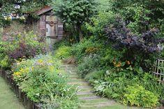 素敵な発見がたくさん! 園芸ショップ探訪6 埼玉「フローラ黒田園芸」 – GardenStory (ガーデンストーリー) Garden Shop, Plants, Plant, Planets
