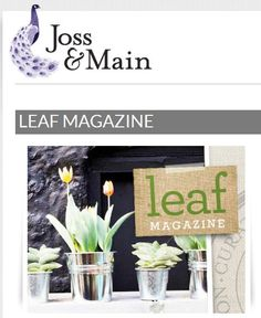 Leaf Magazine Curator's Collection  at Joss & Main until 5/21/12.  Stylish outdoor products chosen by our editors.