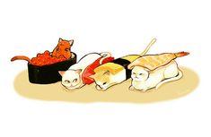 art, kitten, and sushi image