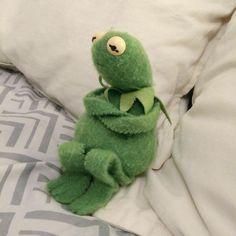 Mood's - Kurbağa Kermit - Wattpad The Frog Funny Kermit Memes, Cute Memes, Spongebob Memes, Frog Wallpaper, Iphone Wallpaper, Meme Faces, Funny Faces, Sapo Kermit, Sapo Meme
