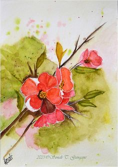 Watercolors, Plum, Greeting Cards, Artists, Wall Art, Life, Painting, Water Colors, Painting Art