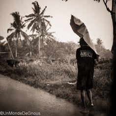 Avec un trajet qui emprunte l'une des plus belles routes de Bali, on en prend plein des mirettes. Rizières, forêts, champs de fruits et légumes, volcans, champs de fruits et légumes, forêts, rizières et… (Lire l'article)