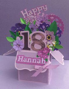 Scan n Cut.....Happy Birthday Hannah....Box Card