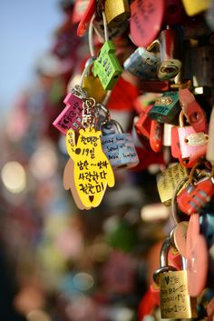 """Love Locks"" Namsan TowerSeoul"