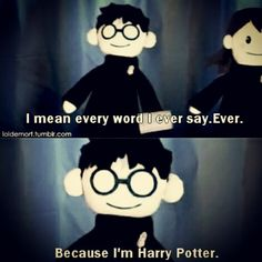 Harry Potter Love, Harry Potter Universal, Harry Potter Fandom, Harry Potter Memes, Hogwarts, Potter Puppet Pals, Very Potter Musical, Mischief Managed, Fantastic Beasts
