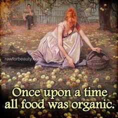 Red is beautiful - Opus 7 Tim Walker, Organic Recipes, Raw Food Recipes, Organic Lifestyle, Healthy Lifestyle, Eating Organic, Organic Cooking, Organic Living, Animation