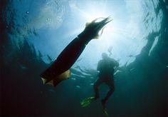 Mar de Cortez.  Google