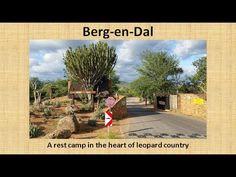 Lower Sabie Rest Camp, Kruger National Park, South Africa - YouTube Kruger National Park, Game Reserve, South Africa, Landscapes, Wildlife, Rest, Country Roads, Camping, World