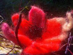 Black Ribbon, Love Flowers, Poppy, Seeds, Wax, Vintage Fashion, Unisex, Gifts, Etsy