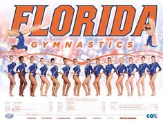 Florida 2013 Gymnastics Posters, Gymnastics Team, Cheerleading, College Cheer, Cheer Dance, Florida Gators, Seasons, Sports Banners, Sports Posters