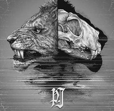 animal-skull-drawings-paul-jackson-15