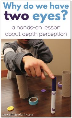 Why do we have two eyes? - - Why do we have two eyes? Gift of Curiosity Why do we have two eyes? This hands-on science lesson about the human body helps children understand that we need two eyes to have proper depth perception. Human Body Lesson, Human Body Science, Human Body Activities, Human Body Unit, Science Activities For Kids, Preschool Science, Science Experiments Kids, Science Lessons, Lessons For Kids