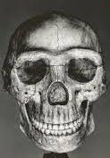 The Encyclopedia of Ancient Giants (Nephilim) in North America: Grinning Skull of a Giant is Uncovered at Sugar Creek, Indiana