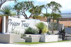 One of the many displays at Dragon Trees Australia.