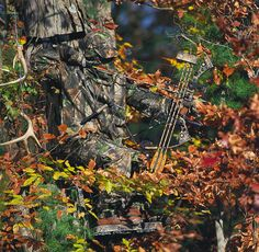 A hunter wearing Realtree Hardwoods Green HD ® camo sits in a tree stand in a forest
