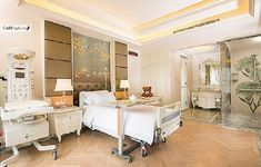 The 6 Most Luxurious Hospital Rooms In The World