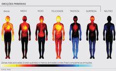 Cientistas registram atividade das emoções no corpo humano | #Biomédicos, #Depressão, #Emoções, #Felicidade, #Raiva, #Tristeza