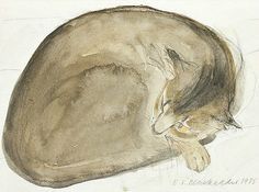 ღღ Elizabeth Blackadder    Abyssinian Cat Asleep    1985