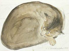 Elizabeth Blackadder - Abyssinian Cat Asleep, 1985