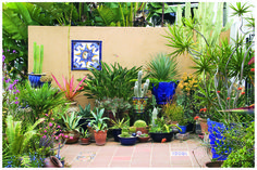 This colorful courtyard garden shows that you needn't use a lot of water to get a lot of color. Beautiful use of tile, colored pots, and succulents. Design by Bishop Garden Design in San Diego Backyard Garden Landscape, Porch Garden, Garden Pots, Garden Ideas, Potted Garden, Modern Backyard, Garden Web, Garden Modern, Garden Oasis