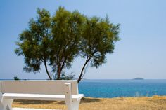 Bench next to a tree providing a sea view for romantics in Batsi