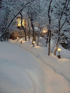 winter snow along a lighted lane Winter Szenen, Winter Love, Winter Magic, Winter Christmas, Christmas Photos, Christmas Time, Beautiful World, Beautiful Places, Snow Pictures