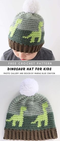 dd022a7e553 Dinosaur Crochet Hat for Kids with Free Pattern