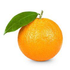 laranja - Pesquisa Google