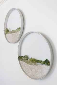 Trang trí showroom với chậu cây nhỏ gắn trực tiếp lên tường