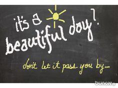 beautiful day....beautiful buncee....