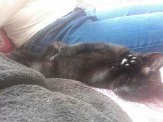 I'm sleeping..Talk 2 my little feet..