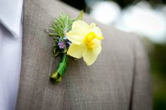 Top 10 Spring Wedding Flowers (names and photos) | http://www.weddinginclude.com/2016/03/top-spring-wedding-flowers-names-and-photos/