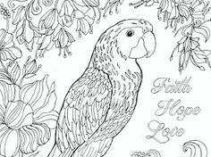 Birds - Google Drive Fairy Coloring, Adult Coloring Pages, Colouring, Bible Verse Coloring Page, Addams Family Characters, Printable Bible Verses, Kids Church, Google Drive, Religion