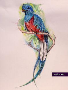 Quetzal tattoo design