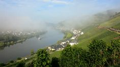 A river ferry passes through morning mist beside a rural village and beautiful green vineyards, Zell Mosel, Germany - HD stock video clip