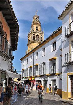 Calle Judería in (el Barrio de) la Judería, Córdoba, Andalucía, Spain