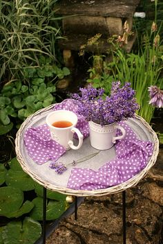 tea time by the pond!